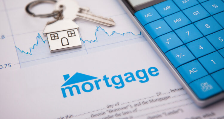 The Luvanex Mortgage Program: All You Need To Know